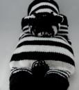 zebra pyjama case
