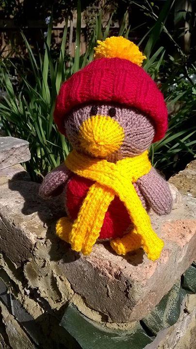 My little robin in the garden